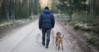 Walking with Dog in the Road